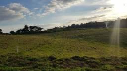 R17 - terreno mais árvores