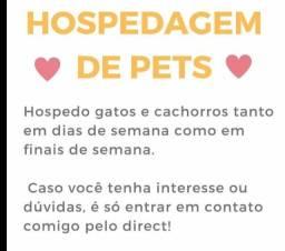 Hotelzinho para cães