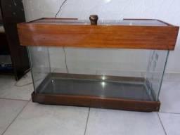Vendo este aquário ?