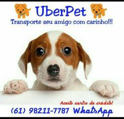 "Transporte exclusivo para PETs ""UbberPet"""