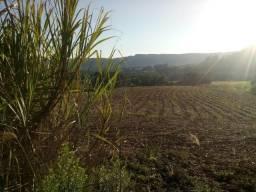 Vendo 5.2 hectares de terra