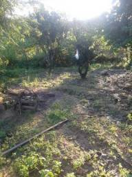 02 lotes de terra a venda em Alagoinhas-Ba. ou aceita troca por carro