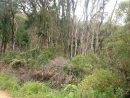 Terreno para chacara de 3 Alqueires proximo a represa do Capivari