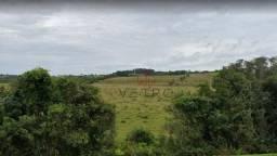 Sítio no Distrito Santa Silvana em Pelotas!