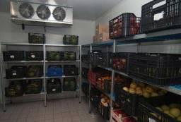 Câmara Fria para Frutas, Legumes e Verduras (Hortifruti)
