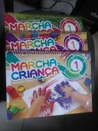 Livro educação infantil semi novo