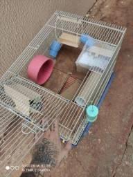 Hamster Fêmea + Gaiola Grande