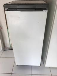 Freezer vertical