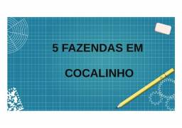 Título do anúncio: Fazendas em Cocalinho
