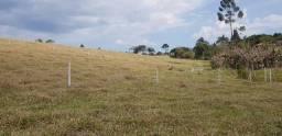 R17 - enjoei do meu imóvel rural em santa Isabel