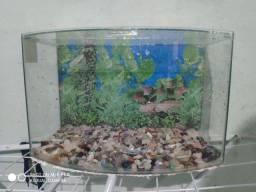 Aquário para peixes novo