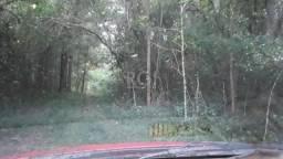 Terreno à venda em Branquinha, Viamao cod:BT11072