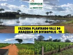 Fazenda plantando no vale do Araguaia em Divinópolis Tocantins