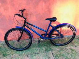 Bicicleta Poti Adulto