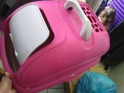 Sanitário para gatos