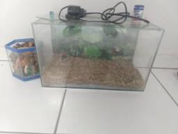 Vendo dois aquários para peixinho