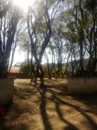 Fazenda 80 alqueires, a 8 km de Curiúva PR