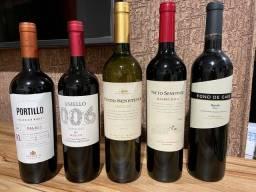 Vinhos Argentinos