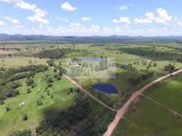 956 hectares - Bonito-Ms