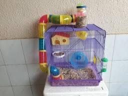 Hamsters e Gaiola