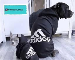 Roupa para cães grandes