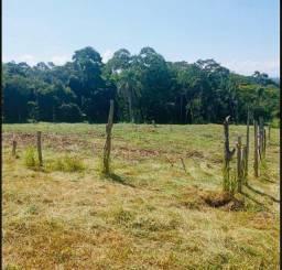 Terrenos à venda