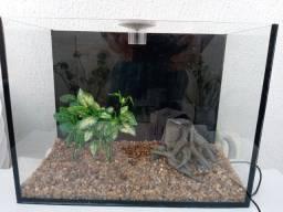 Aquario novo 40 cm