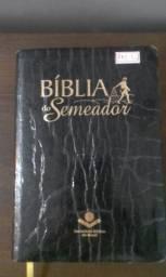 Biblia Sagrada (5)