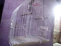 Vendo uma gaiola nova so 80 reais