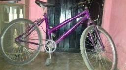 Bicicleta roxa