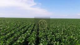 Fazenda à venda, 7308400 m² - Centro - Ibaiti/PR