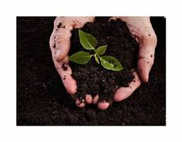Terra para Plantio e Também para Aterro