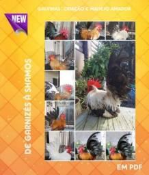 Manual para criadores de galinhas , serve para todas as raças !