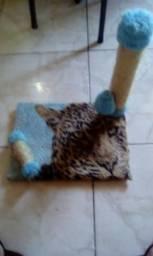Arranha gato