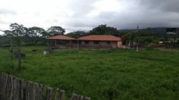 Ótima fazenda de 12,72 hectares com casa grande, a 5 km de Agrestina, a 800 m da BR-104