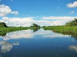 Excelente Fazenda no Pantanal do Mato Grosso do Sul