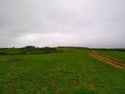 Area campo 400 ha