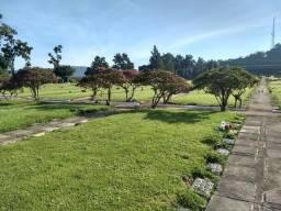 Tumulo Cemitério do Horto Florestal
