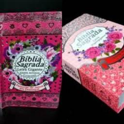 Bíblia Sagrada da Mulher Laminada Rosa