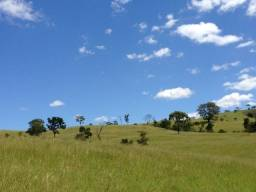 52 Alq. Campo Alegre-GO. Asfalto|Boa de Água $50Mil/Alq