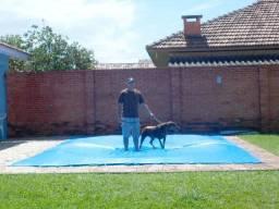 Capas para piscina direto de fábrica. Proteja crianças e animais. Capaflex