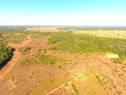 1.481 há (306 alq) projeto para grãos com alta produção no Vale do Araguaia