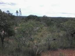 Terras a Venda Maranhão