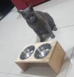 Comedouro e Bebedouro para Gatos