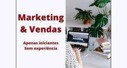Iniciante de marketing e vendas (sem experiência)