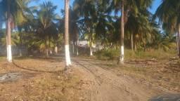 Terrenos na Barra Nova