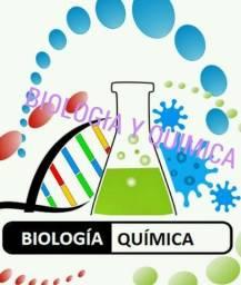 Aulas virtuais de química e biologia com professora com experiência