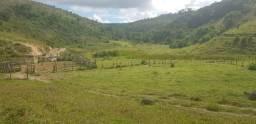 Fazenda 590,48 hectares no Leste de Minas