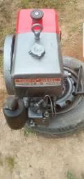 Motor tobata diesel com radiador