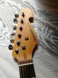 Guitarra Giannini, capa, suporte, alavanca